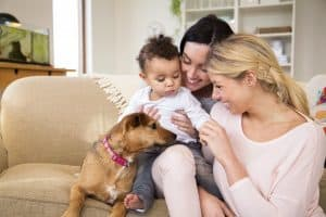 The Importance of Second Parent Adoption in Maryland